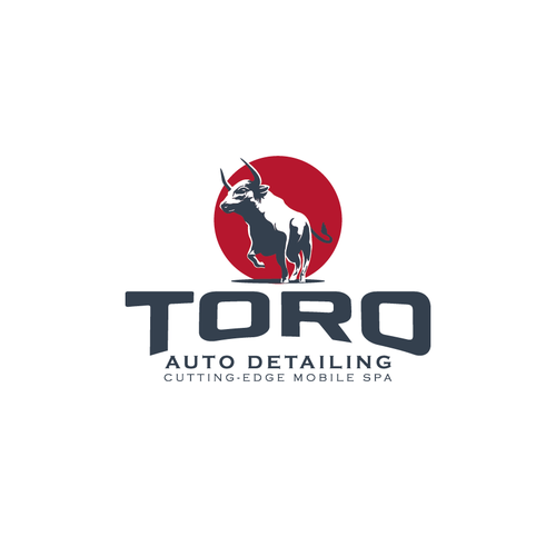 Popular design with the title 'Toro Auto Detailing'