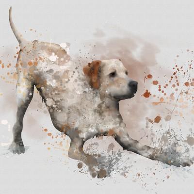Mirro dog illustration B