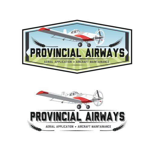Service design with the title 'Help Provincial Airways with a new logo'