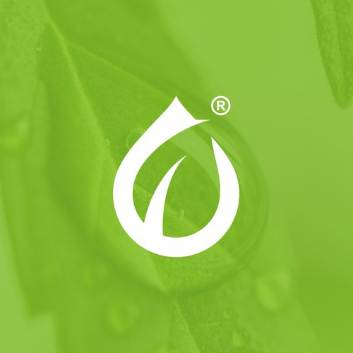 Hemp logo with the title 'Bold Design with use of negative Space for CANAPA, a CBD brand'