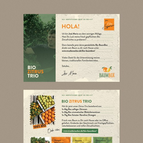 Grocery store design with the title 'BAUM BOX Postcard'