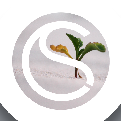 Climate design with the title 'ClimateSeed Logo Design'