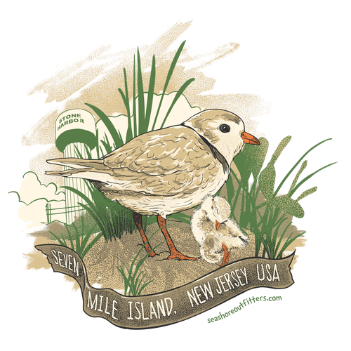 Island design with the title 'piping plovers for seashore outfitters'