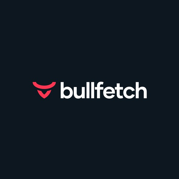 Logo with the title 'bullfetch'