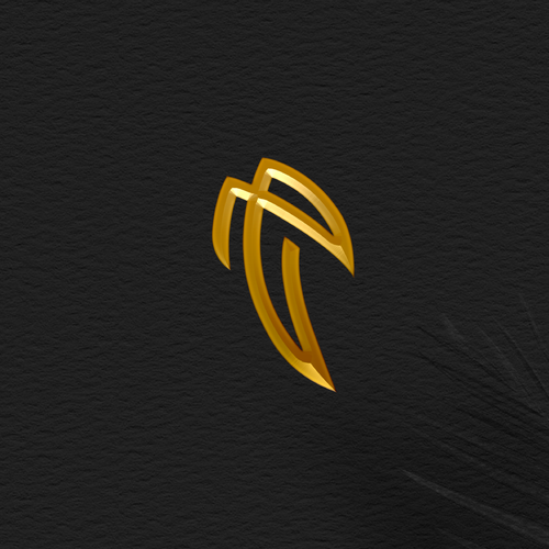 Rise logo with the title 'fly'