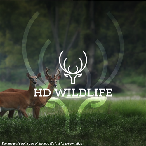 Deer head logo with the title 'HD Wildlife'