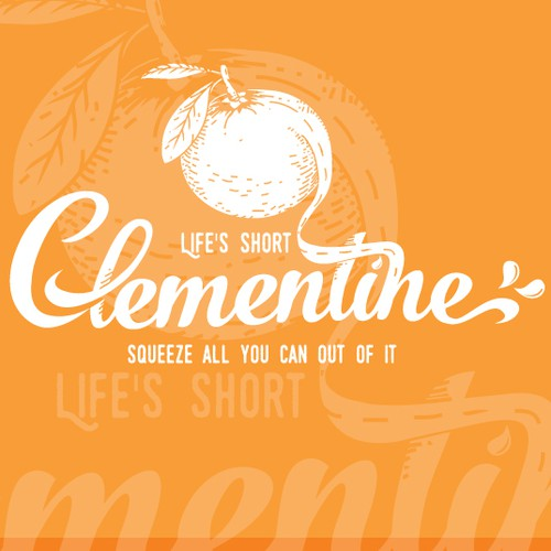 Green and white logo with the title 'Clementine campervan'