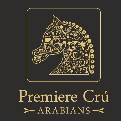 Dark brand with the title 'Premiere Crú Arabians Show Horse Logo'