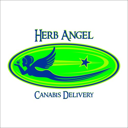 North Star logo with the title 'design for HERB ANGEL'