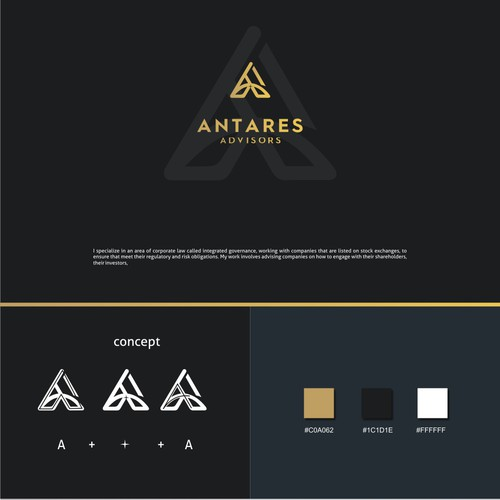 A brand with the title 'logo concept '