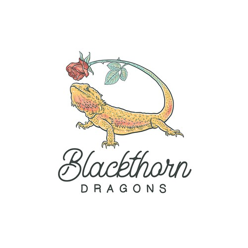 Lizard design with the title 'Blackthorn Dragons'