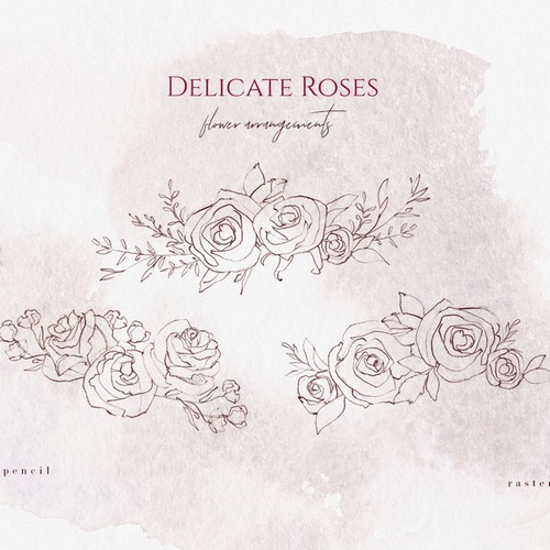 Feminine illustration with the title 'Rose Sketches & Watercolor Clipart'