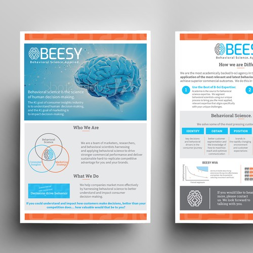 Structural design with the title 'Marketing flyer for behavioral Science company'