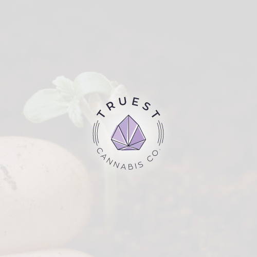 Indoor design with the title 'Modern logo for cannabis growing brand'