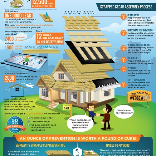 Roof design with the title 'Cedar roof for house property infographic'