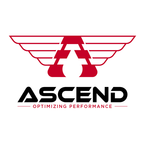 Crane logo with the title 'Logo design for Ascend company '