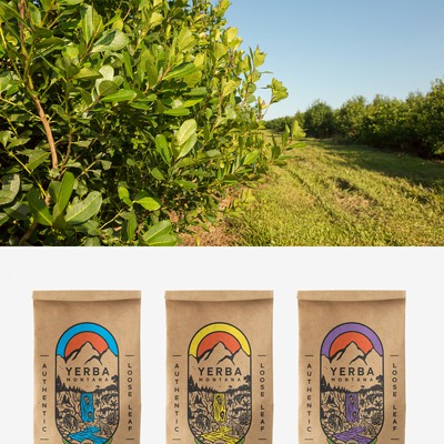 Illustrative Packaging design forYerba Mate Tea