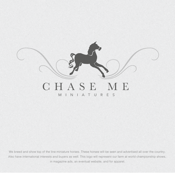 Pony logo with the title 'Catch Me Miniatures'