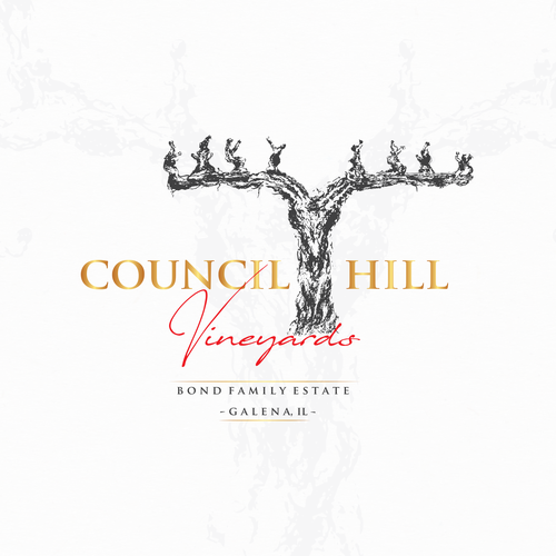 Vineyard logo with the title 'Logo for Council Hill'