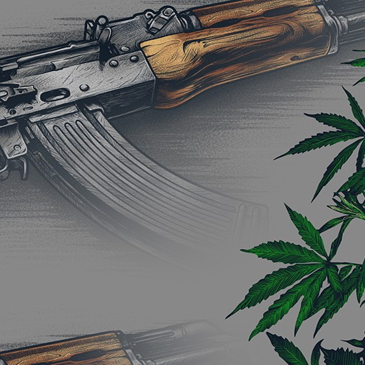 Political artwork with the title 'WAR on WEED 2'