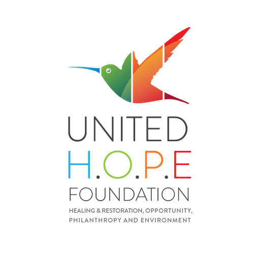 Foundation logo with the title 'Logo for jamaican special aid non-profit organization'
