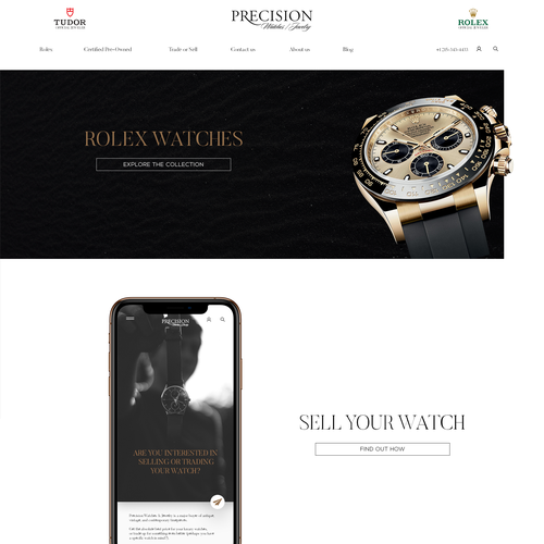 High-end website with the title 'home page redesign concept for PJ'