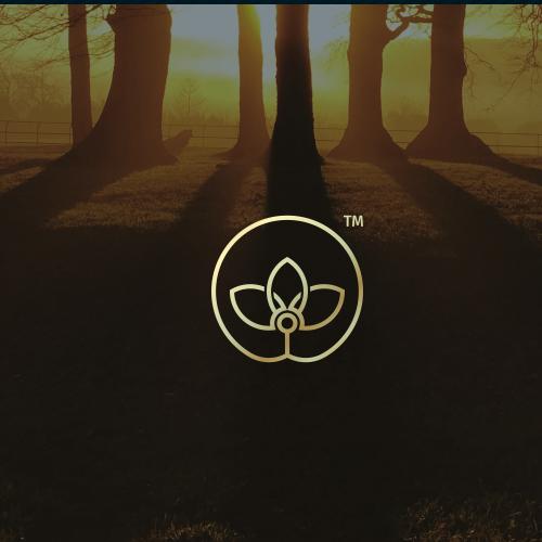 Unique logo with the title 'holistic musculoskeletal medicine'