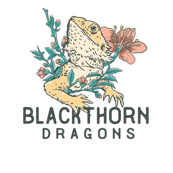Reptile design with the title 'blackthorn dragons'