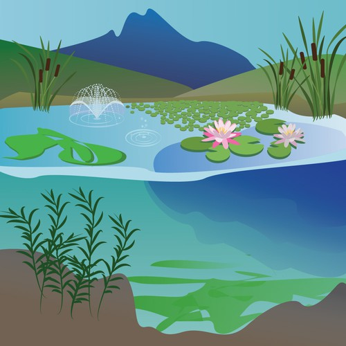 Lake illustration with the title 'illustration for aquatic control company'