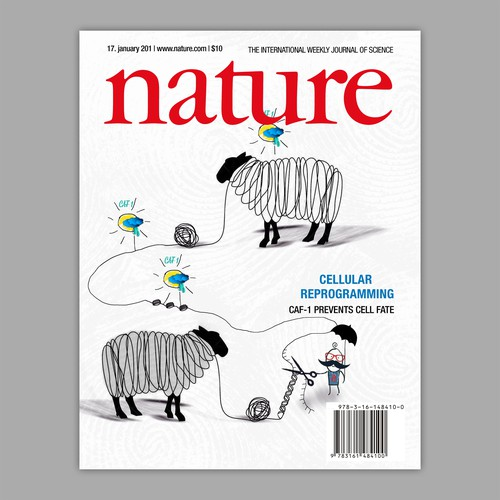 Innovative design with the title 'Nature journal cover'