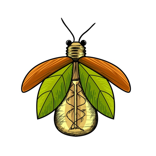 Firefly logo with the title 'Hand-drawn logo for a firefly with lightbulb body'
