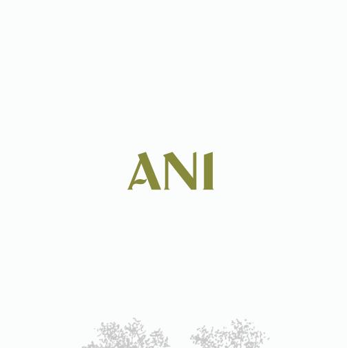 Serif design with the title 'Custom wordmark redesign'