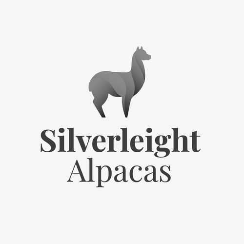 Alpaca logo with the title 'Modern alpaca'