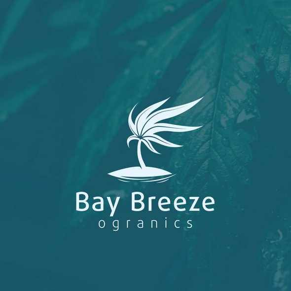 Breeze logo with the title 'Hemp Palm on a windy day!'