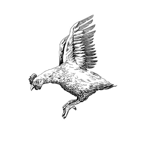 One-color design with the title 'Flying Chicken'
