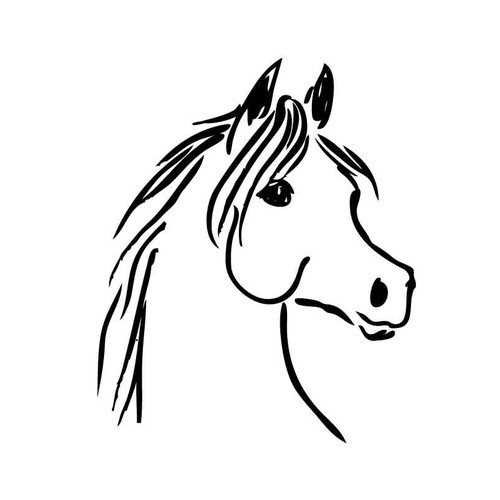 Black and white illustration with the title 'horse head'