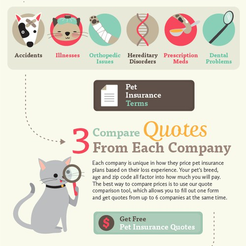 Step design with the title 'Infographic for Pet Insurance Agency'