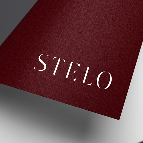 Videography logo with the title 'STELO'