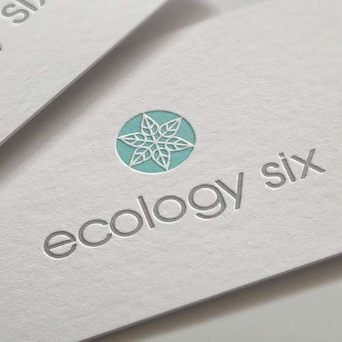 Gray and purple logo with the title 'Ecology Six logo'
