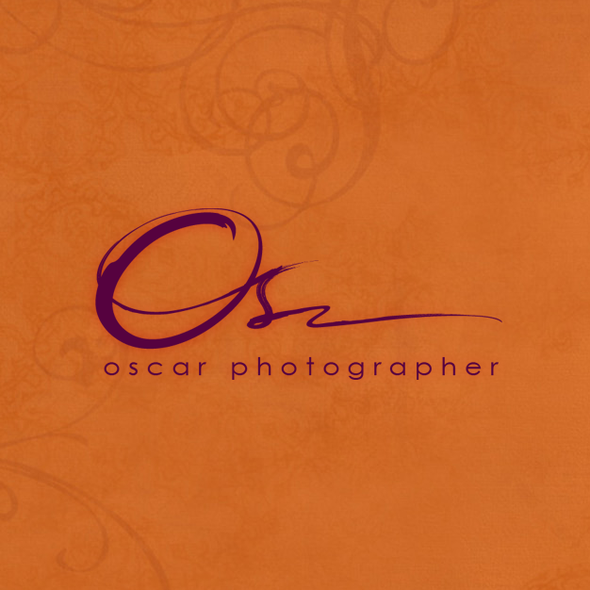 Brush stroke design with the title 'boutique photographer need a distinctive logo'