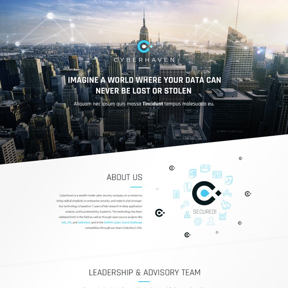 Blue website with the title 'cyberhaven'