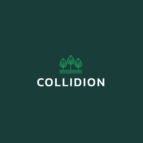 Simple logo with the title 'Collidion Logo Redesign'