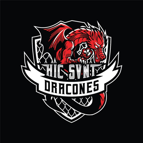 3D sports logo with the title 'Dragon Logo for MMA Team'