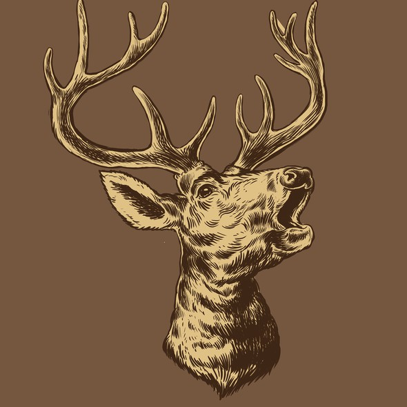 Hipster artwork with the title 'Deer drawing'