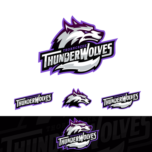 Purple and black design with the title 'Sports Logo for ThornCreek Christian School'