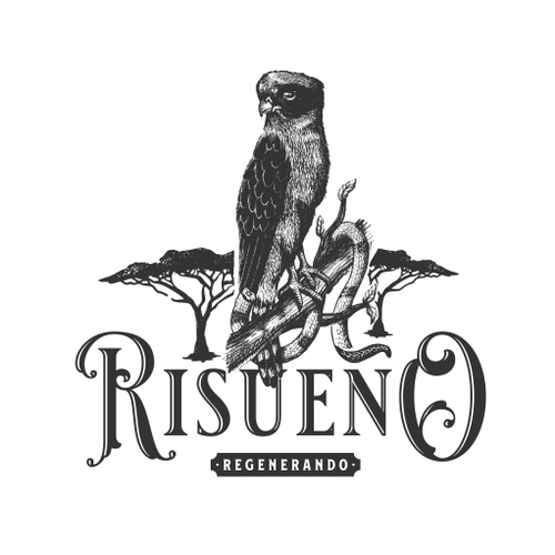 Snake logo with the title 'Logo Concept for Risueno'