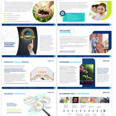 Pitch deck with custom Infographic for BIOPURE