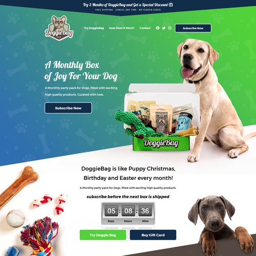 Subscription website with the title 'Doggie Subscription Box Website Design'