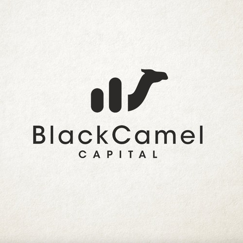 Financial service logo with the title 'Logo for a Canadian investment company'