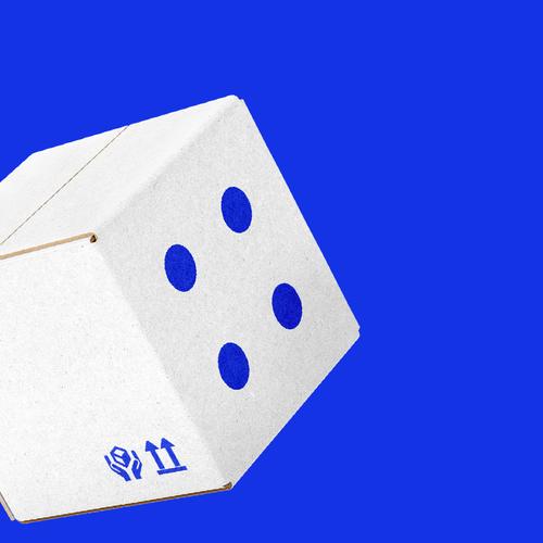 Paper logo with the title 'P r o j e c t D i c e'